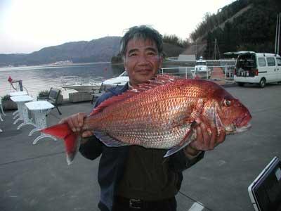 2011年4月6日(水)若狭湾で鯛の83cmを釣られました