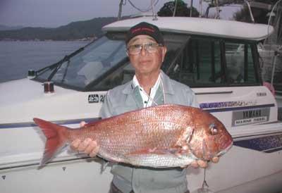 2011年5月15日(日)若狭湾で鯛の75cmを釣られました