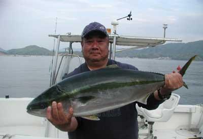 2011年5月17日(火)若狭湾でブリの90cmを釣られました