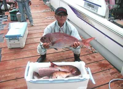 2011年6月5日(日)若狭湾で鯛の70cmを釣られました