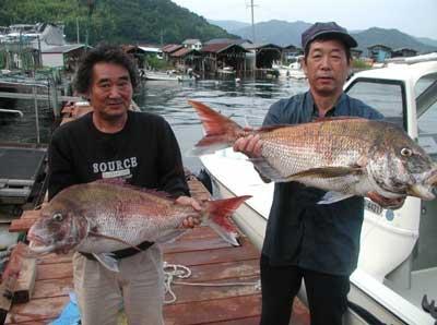 2011年6月9日(木)若狭湾で鯛の79.8cmを釣られました