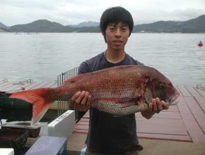 2011年9月17日(土)若狭湾で鯛の74.0cmを釣られました