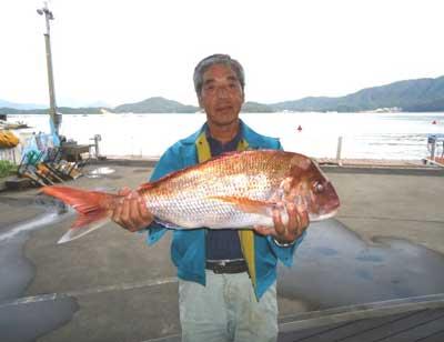 2011年9月26日(月)若狭湾で鯛の71.0cmを釣られました
