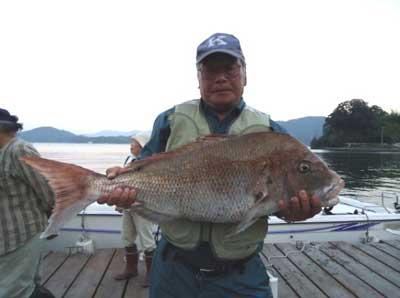 2011年10月20日(木)若狭湾で鯛の80cmを釣られました