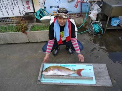 2011年11月2日(水)若狭湾で鯛の75.0cmを釣られました