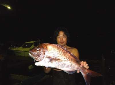 2011年11月4日(金)若狭湾で鯛の75cmを釣られました