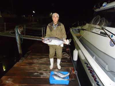 2011年11月14日(水)若狭湾でメダイの82cmを釣られました