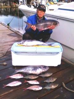 2012年1月16日(月)若狭湾でメダイを釣られました