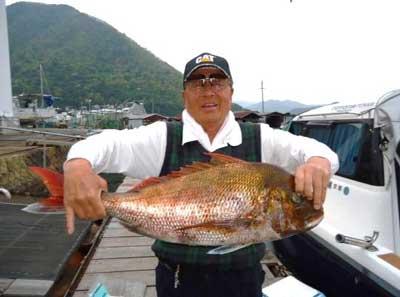 2012年4月25日(水)若狭湾で鯛を釣られました