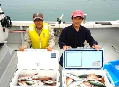 2012年4月30日(月)若狭湾で鯛やハマチを釣られました