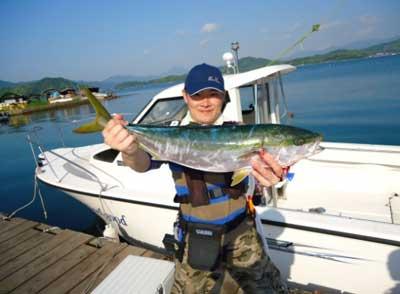 2012年5月18日(金)若狭湾でメジロの70cmを釣られました