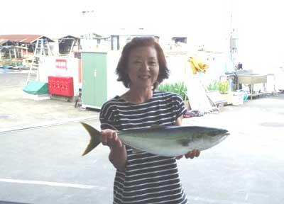 2012年6月3日(日)若狭湾でハマチの65cmを釣られました