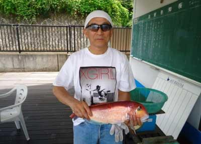 2012年7月16日(月)若狭湾でアマダイの44.0cmを釣られました