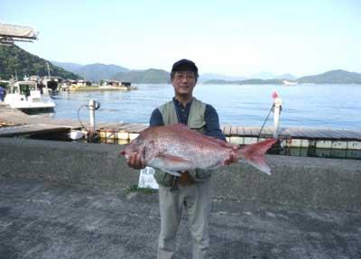 2012年7月30日(月)若狭湾で鯛の70.0cmを釣られました