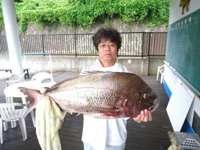 2012年8月13日(月)若狭湾で鯛の87.0cmを釣られました