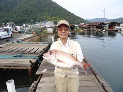 2012年10月14日(日)若狭湾で鯛の61.5cmを釣られました