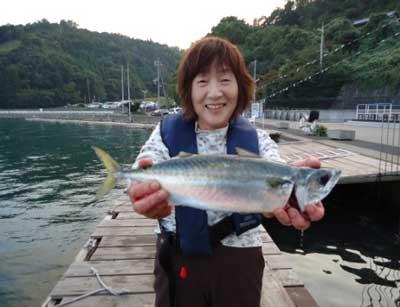 2012年10月21日(日)若狭湾で鯵を釣られました