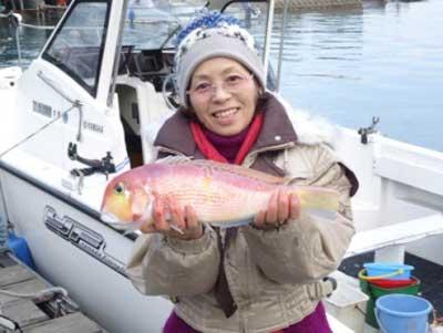 2012年12月14日(金)若狭湾でアマダイの42.0cmを釣られました