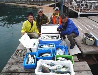 2013年1月13日(日)若狭湾でチダイやハマチやレンコを釣られました