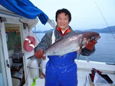 2013年1月13日(日)若狭湾でメダイの72.0cmを釣られました
