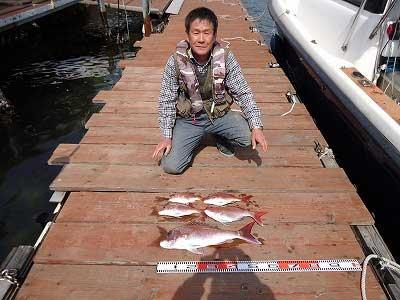 2013年3月30日(土)若狭湾で鯛の60.0cmを釣られました