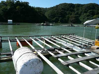 2011年9月23日(金)海の上でフロートを入れる作業は迅速にする必要があります