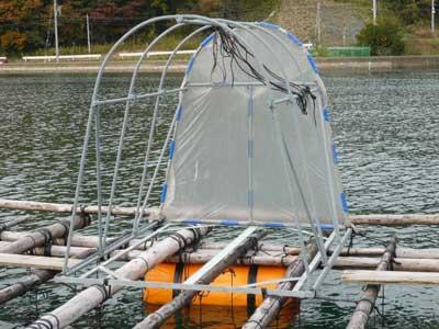 これで真牡蠣の筏3基分全てに簡易テントを設置する事が出来ました